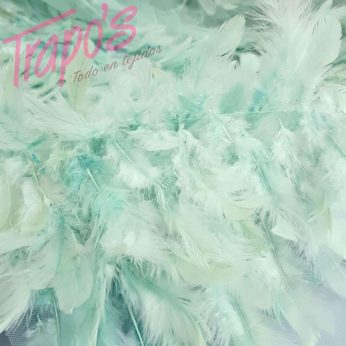 plumas-agua
