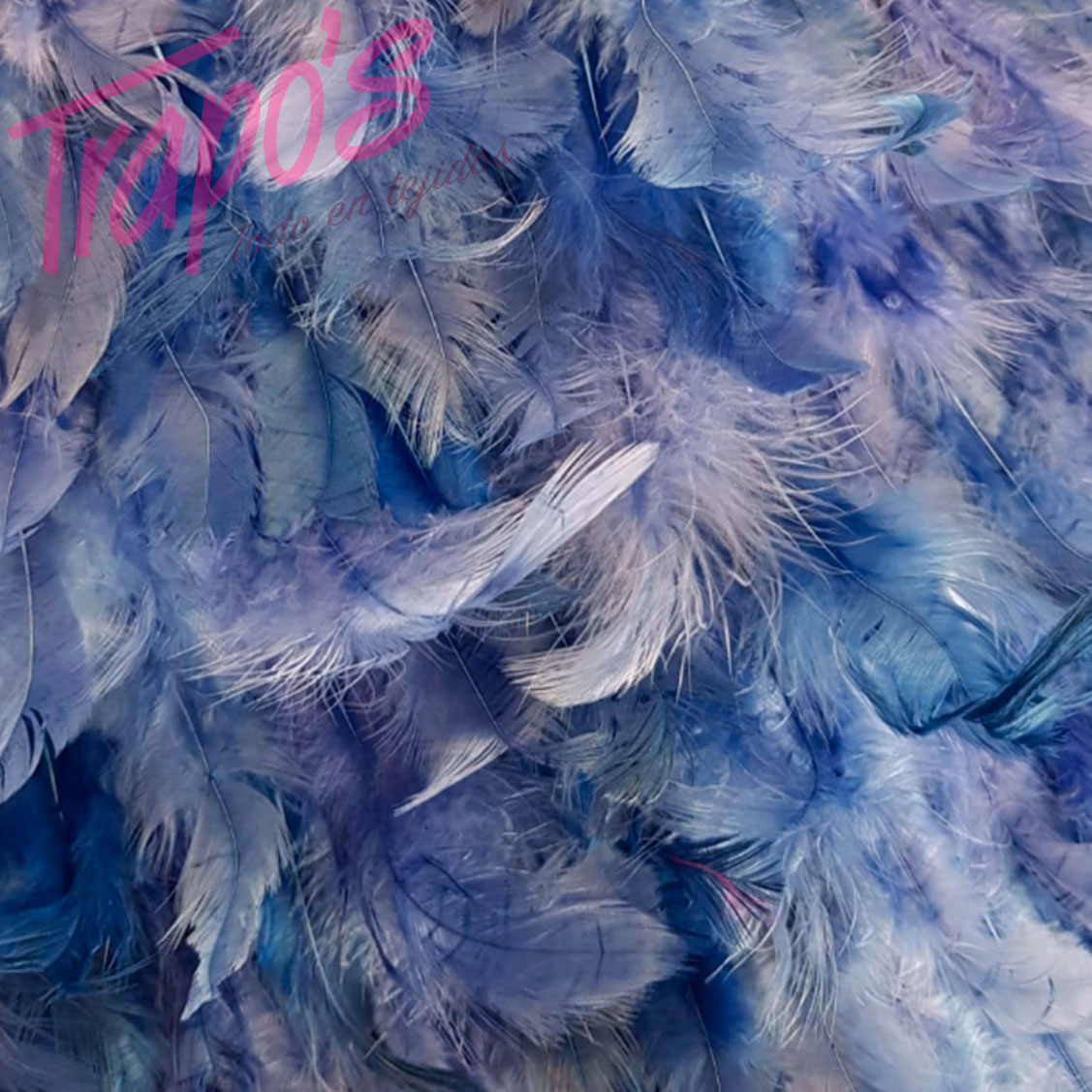 plumas-azul2