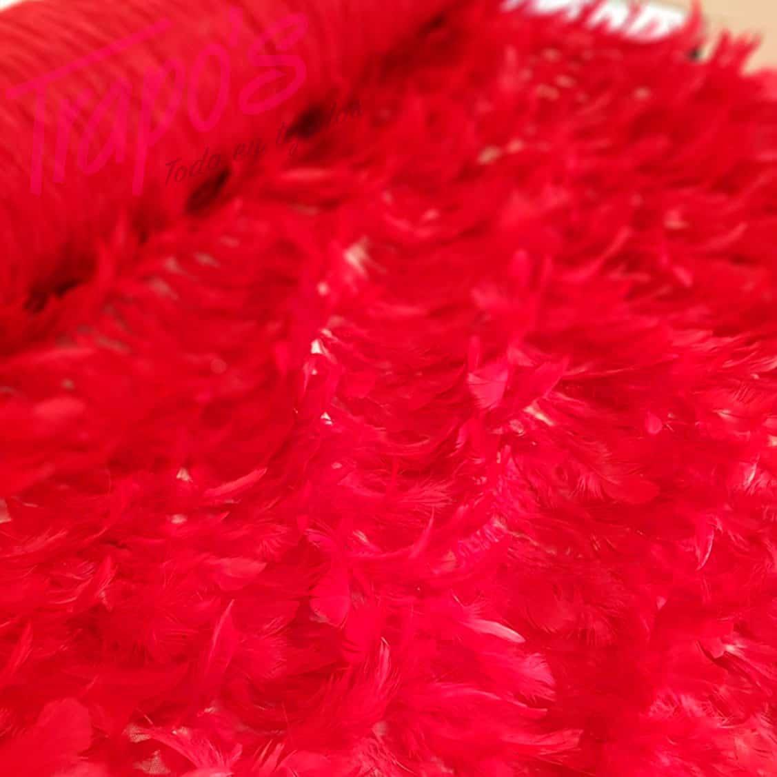tela-plumas-rojasfb