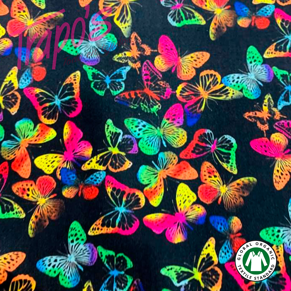 mariposa-negra2