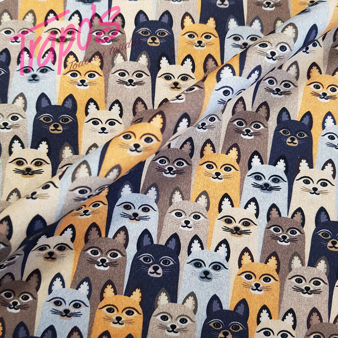 gatos-mostaza